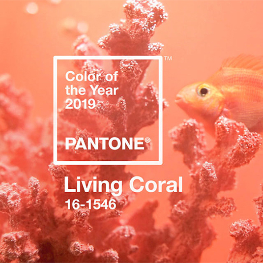 Trend colour: Living Coral